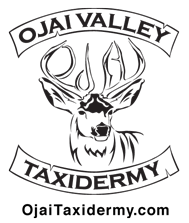 Ojai Valley Taxidermy Company Logo